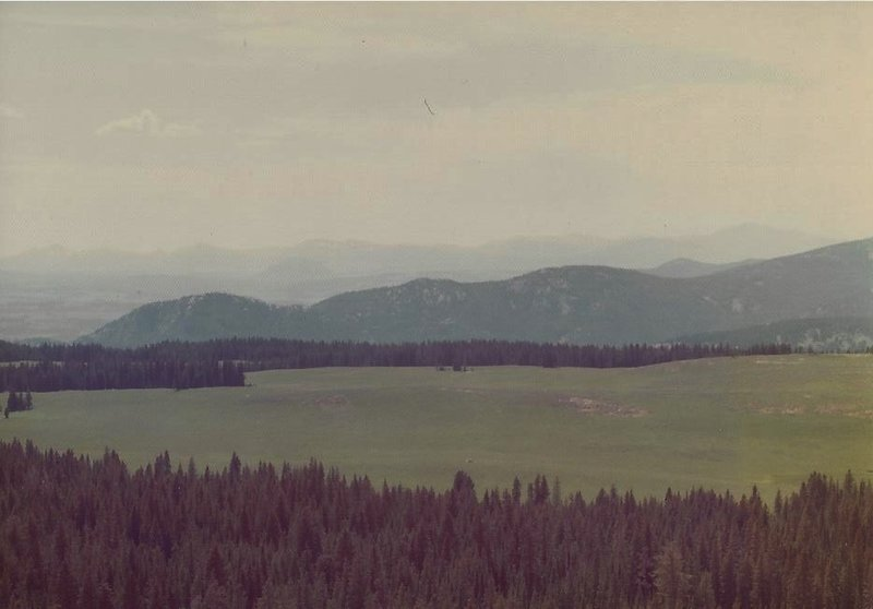 Looking southwest from Buffalo Plateau in this pre-1988 fire photo.