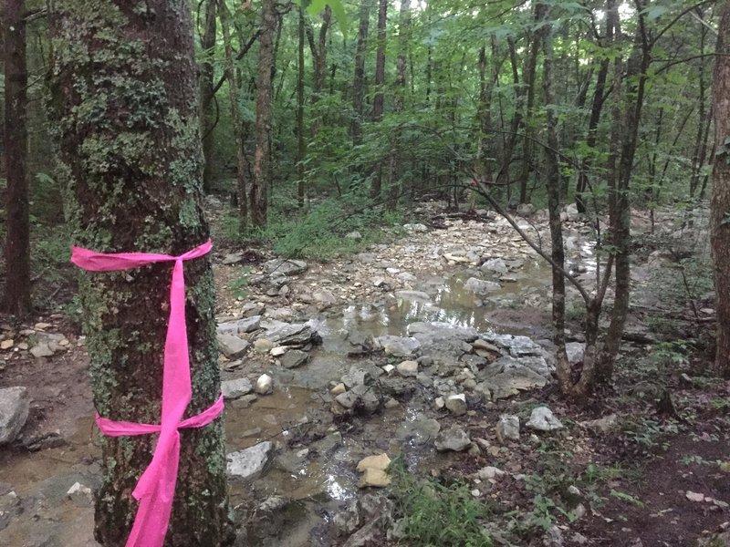 Rocky creek crossing.