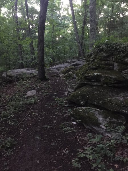 Rock outcroppings.
