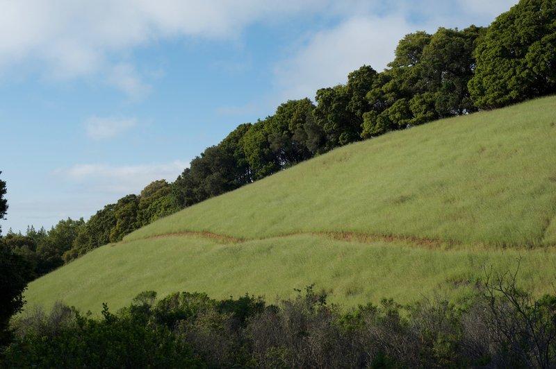 The trail hugs the hillside along a narrow, dirt trail.