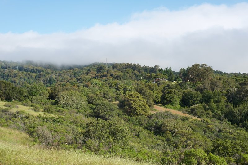 In the evening, fog and clouds roll into the preserve over the hills.