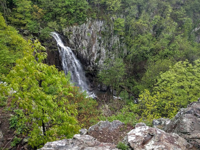 Overall Run Falls, the tallest waterfall in SNP.