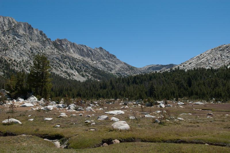 Granite boulders in the meadows.