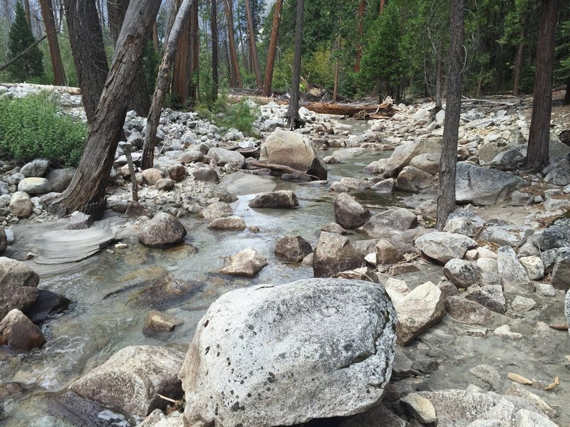 Tenaya Creek.
