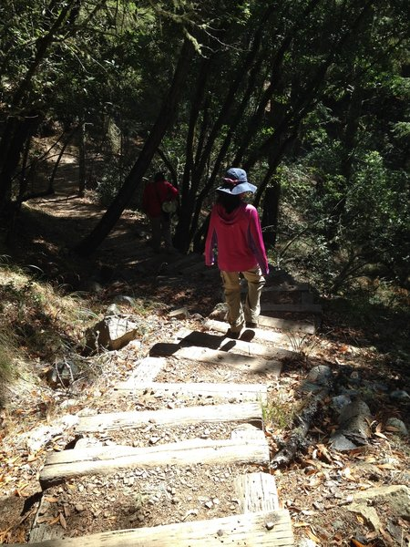 Bootjack Trail stairs