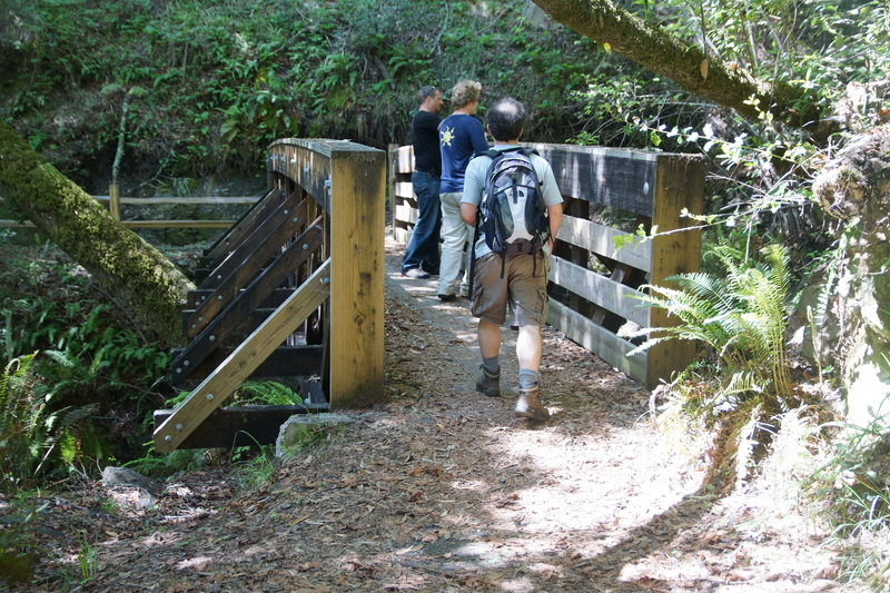 Crossing Spike Buck Creek on the Troop 80 Trail