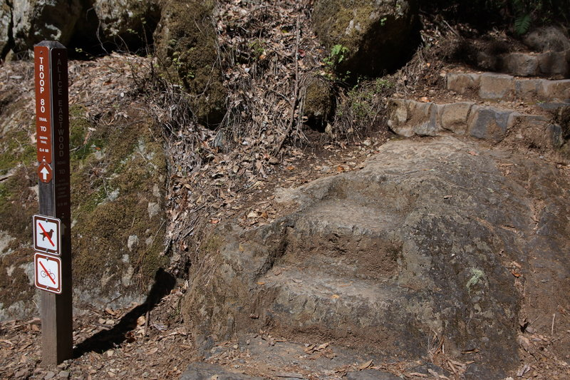 Chipped rock steps to start the Troop 80 Trail