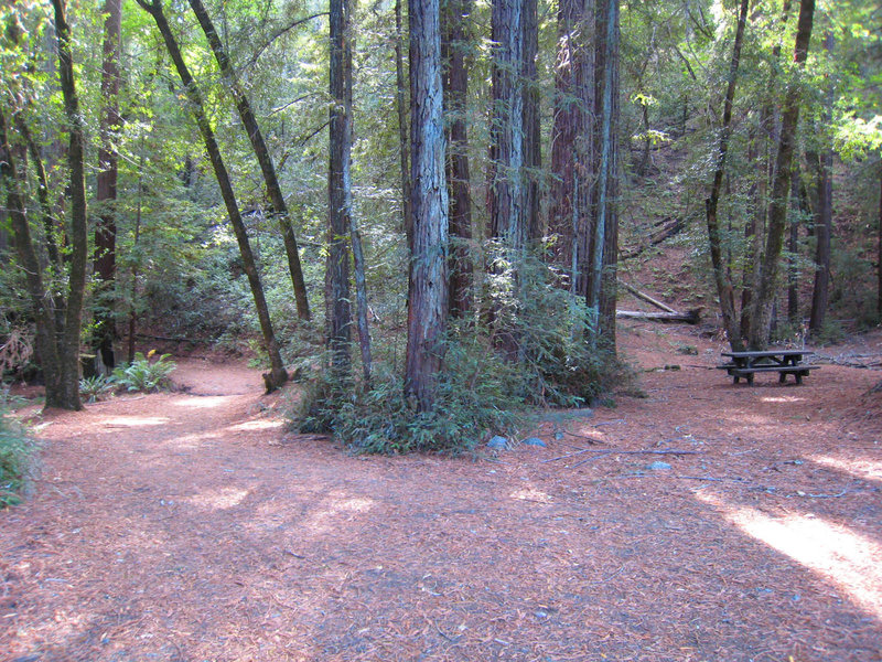Jack London State Historic Park. Rest area well up on Mountain Trail. One picnic table, no water, no restrooms. with permission from MrRedwood