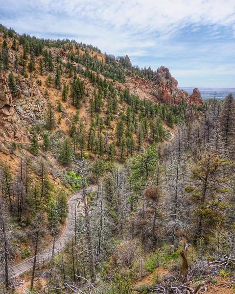 View of N Cheyenne Canyon Rd., about ~0.1 miles from the Mt. Muscoco Trailhead.