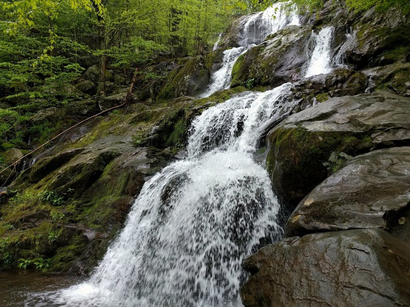 Spring greenery and waterflow at Dark Hollow Falls.