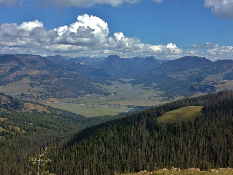 Overlooking the confluence of Soda Butte Creek and the Lamar River from the Specimen Ridge Trail.