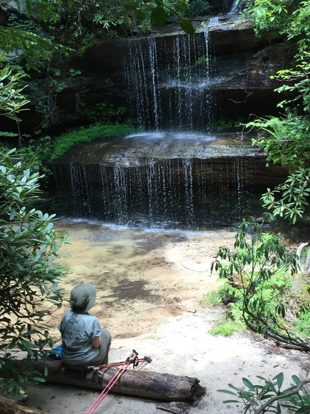 Enjoying the serenity of Crystal Falls.