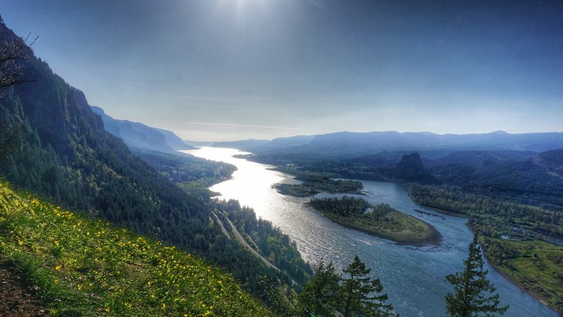 Westward facing view of the Columbia River from the Munra Point Trail (Oregon on the left, Washington on the right).