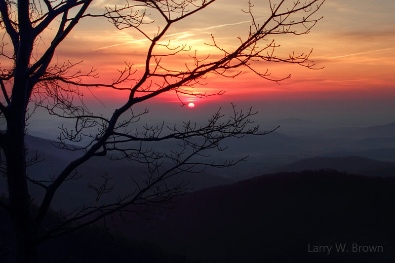 Sunrise view from Buck Hollow Overlook.