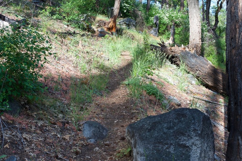 The trail is narrow and rock strewn.