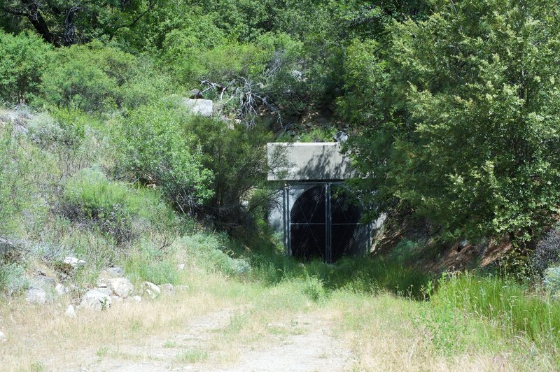 There is a tunnel, which ties into the dam and provides relief in high water, that sits off on the right side of the trail.