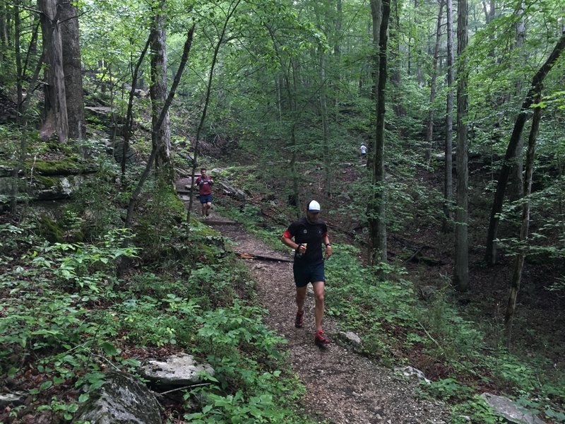 Fun descent on the Sinkhole Trail.