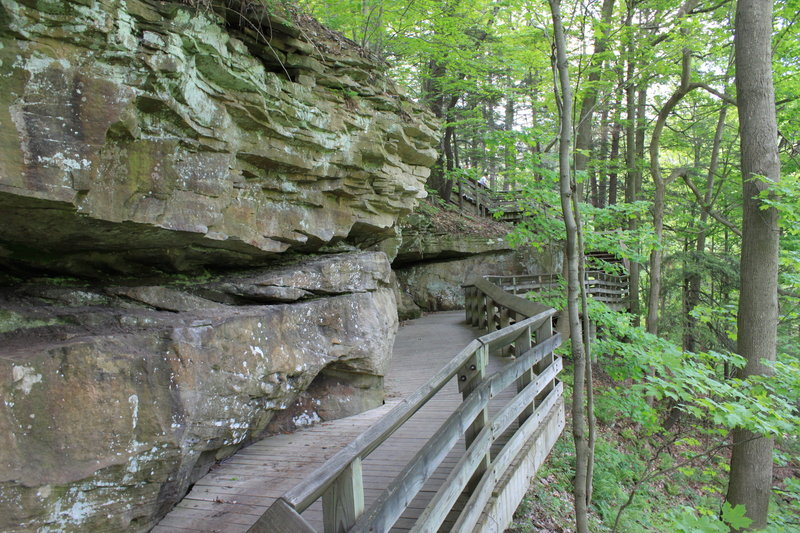 Cuyahoga Valley: Wooden Elevated Path.