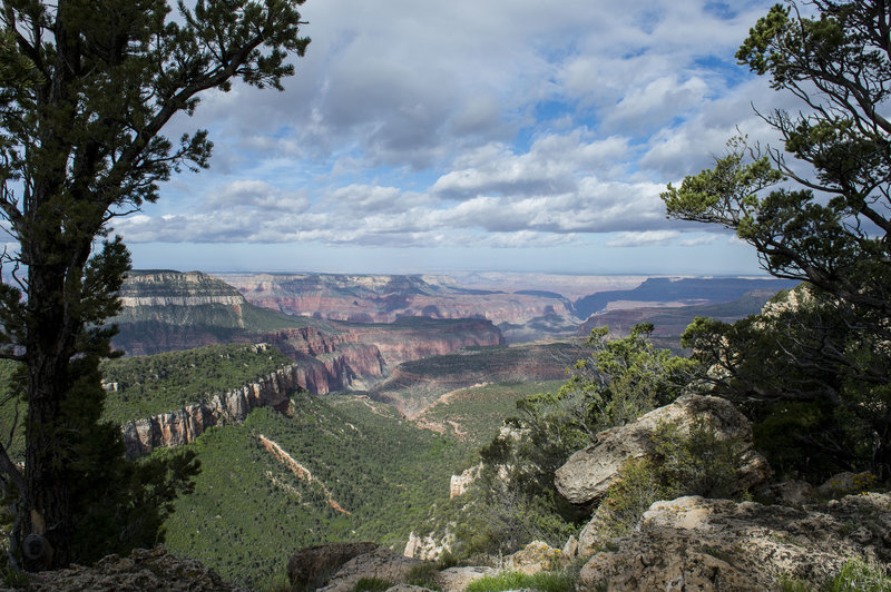 18 miles of this along the Rainbow Rim Trail!