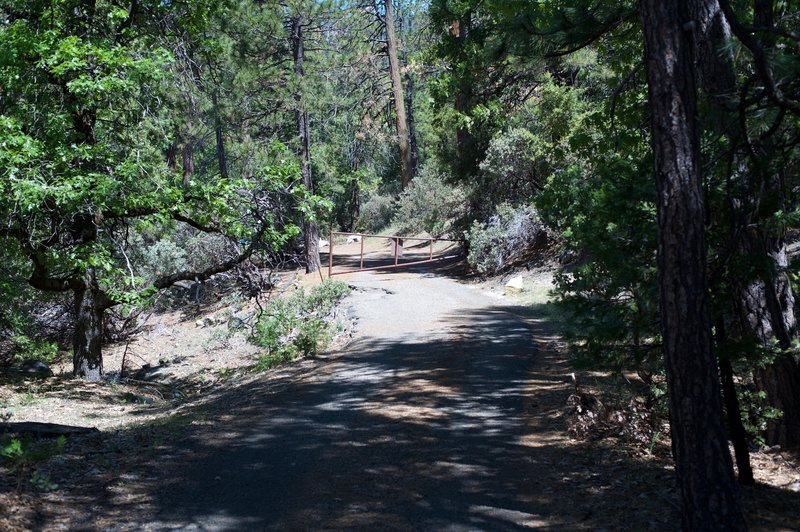 Approaching Wawona Road (Highway 41) returning to the car. There is room for a couple of cars at the trailhead.