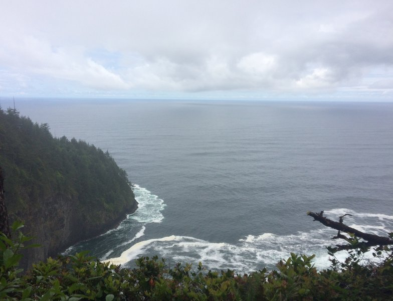 First lookout on Cape Lookout Trail.