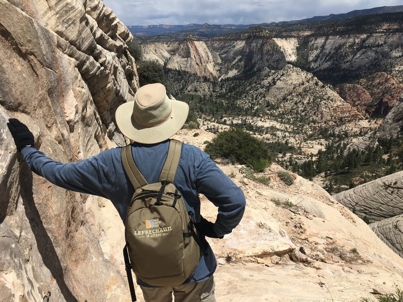 West Rim Trail. This white sandstone escarpment is a great part of the hike - spectacular views and nothing but rock trail.