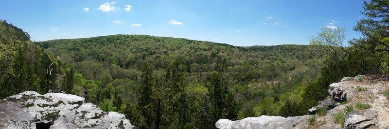 Overlooking Paddy Creek.