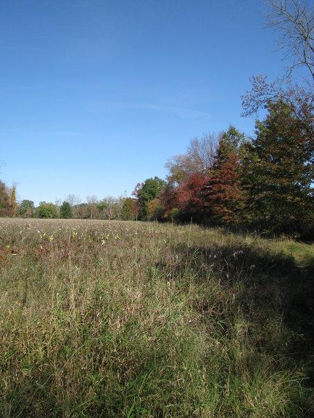 Meadow Trail.