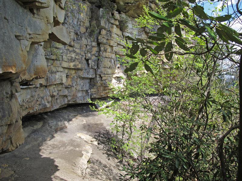 Castle Rock Trail.