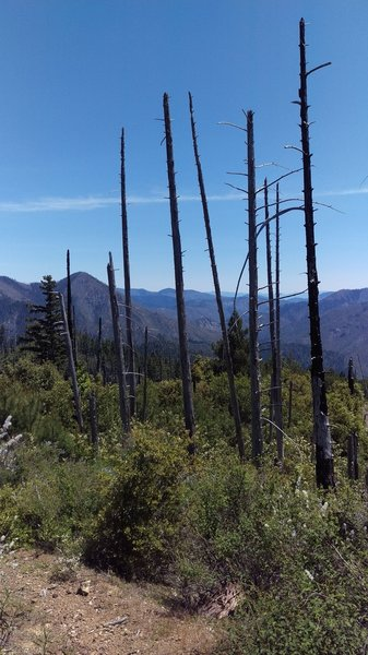 Looking out over the South Fork of Silver Creek basin - A long hot way to go yet.