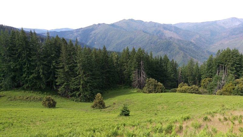 Little Bald Mountain Prairie.