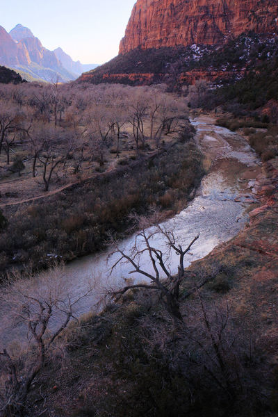 Virgin River, from the Emerald Pools Trail, Zion National Park