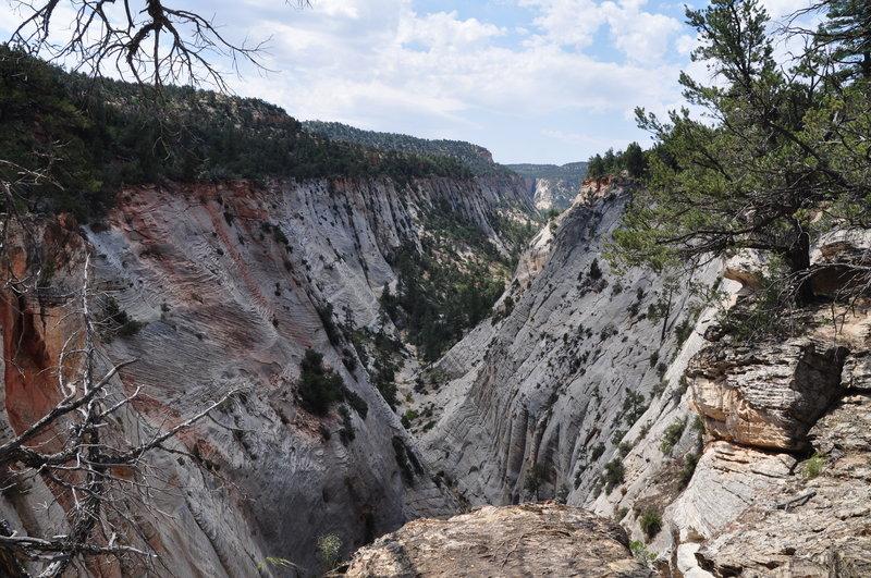 Jolly Gulch, East Rim Trail, Zion National Park