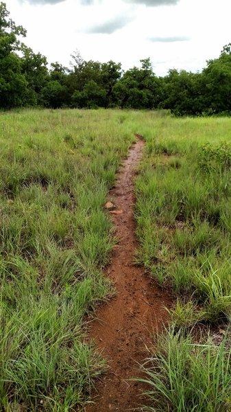 Green Trail.