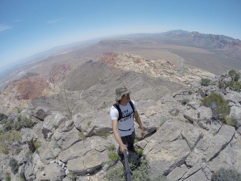 Turtlehead Mountain Summit