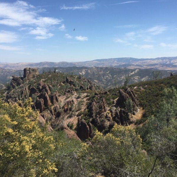 Pinnacles National Park!