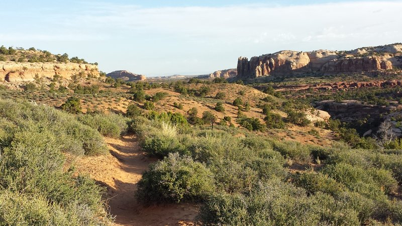 View of sandstone pillars and canyons in distance.