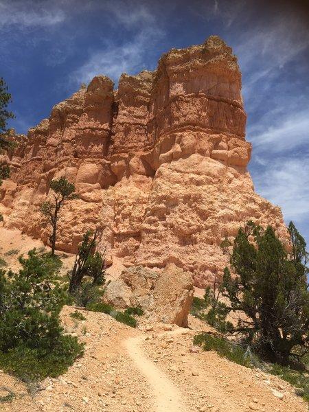 Fairyland Loop, Bryce Canyon National Park.