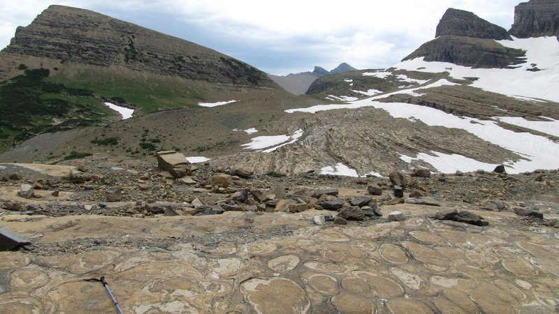 Grinnell Glacier past end of trail, Many Glacier area, Glacier National Park. with permission from phil h