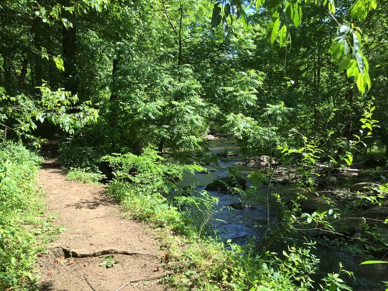 Graves Mill Trail next to the Rapidan River.