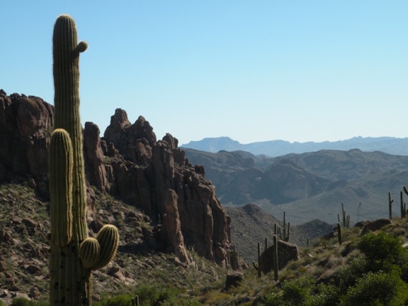 Along the Peralta Trail