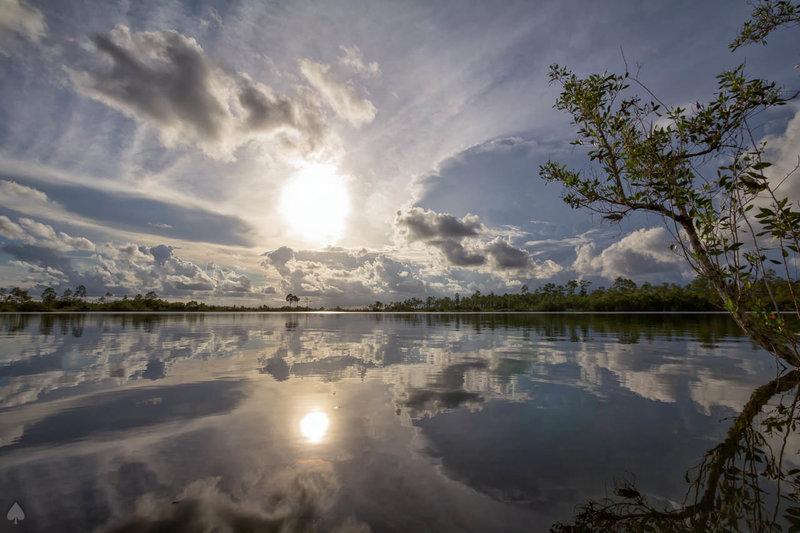 Pine Glades Lake