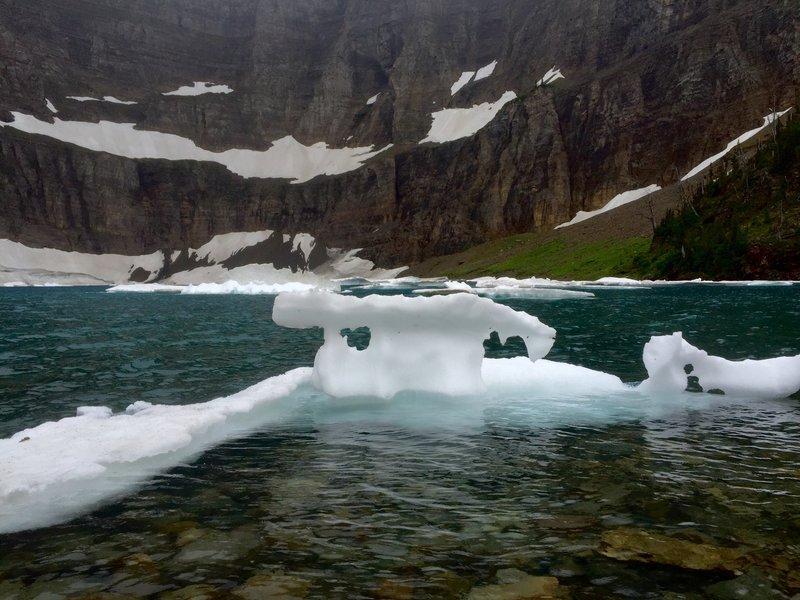 Late July iceburg on Iceburg Lake.