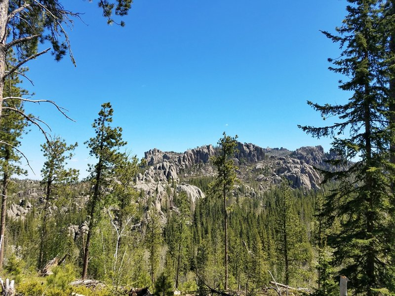 One of the first good views of Harney Peak from Trail #9.