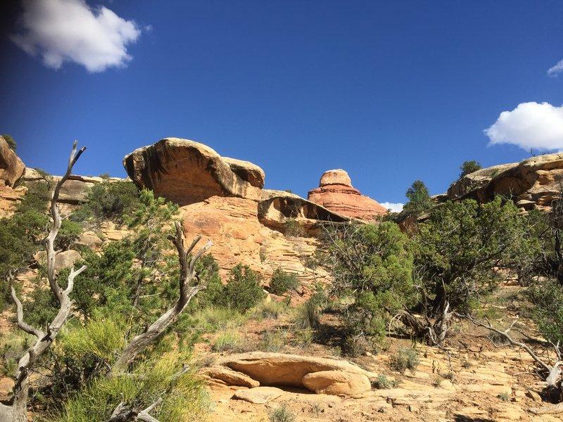 Big Spring Canyon.