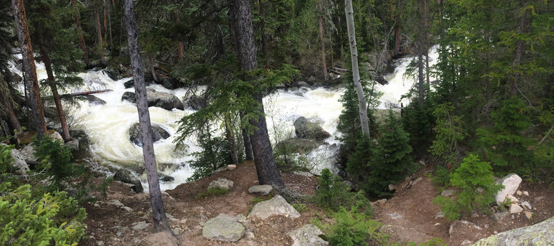 Ouzel Creek rushing with snow melt in June.