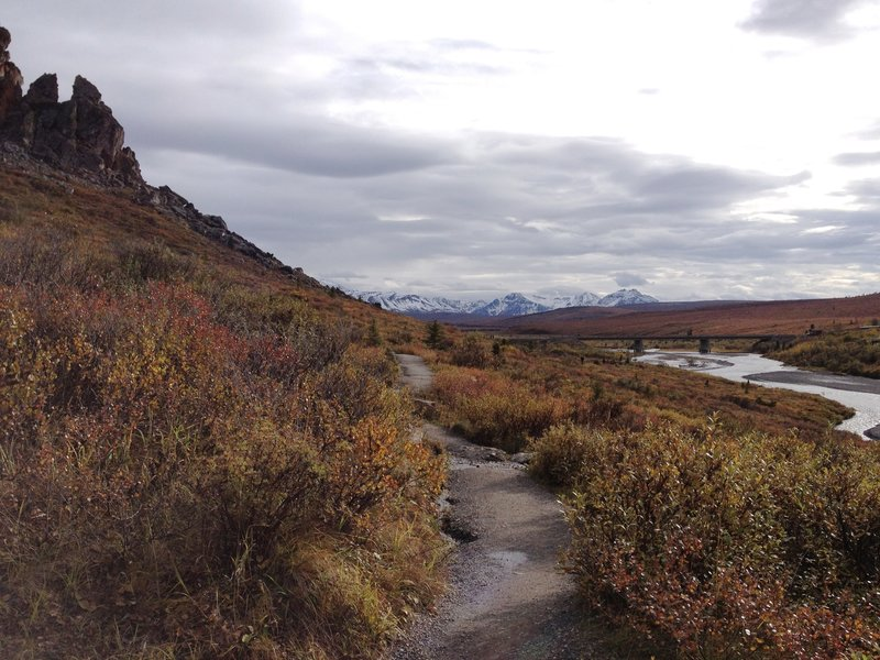 A fall hike alongside the wild and powerful Savage River with mountain visible in the distance.