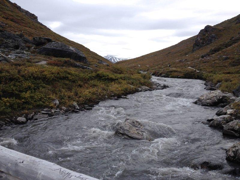 View from bridge crossing over Savage River, September 2015.