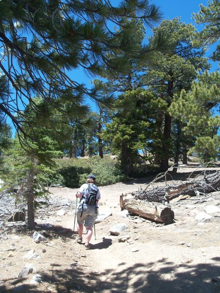 The trail is moderately shaded, with a steady, but easy grade.