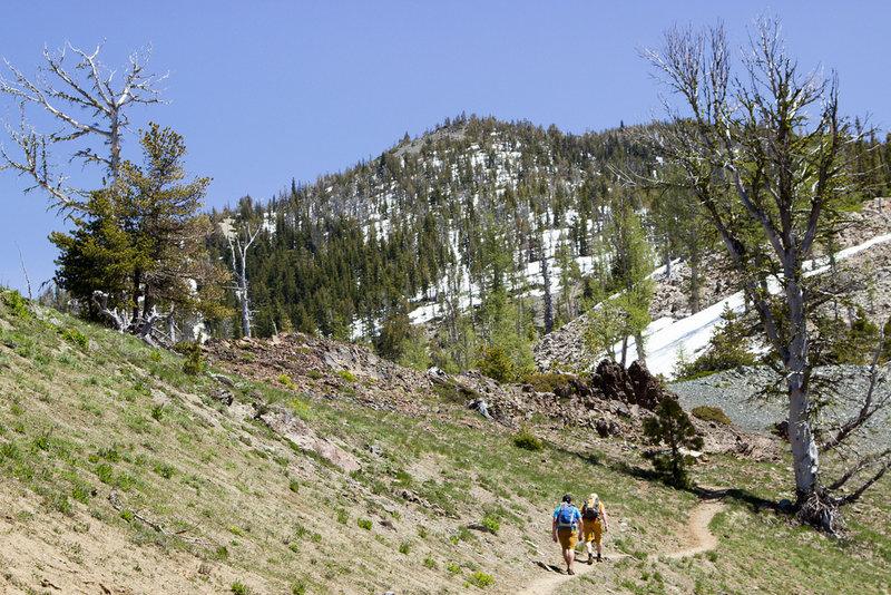 Almost to Navaho Pass with Navaho Peak on the horizon.